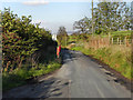 SJ9693 : Higham Lane, Werneth Low by David Dixon