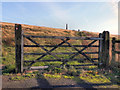 SD9608 : Bishop Park, Wotherhead Hill by David Dixon