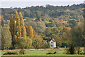 TL7508 : Essex in autumn by terry joyce