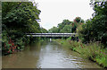 SJ6475 : Trent and Mersey Canal south-west of Anderton, Cheshire by Roger  Kidd