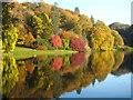 ST7734 : Autumn colours beside the Garden Lake at Stourhead : Week 43