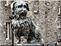 NT2573 : Greyfriars Bobby by David Dixon