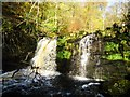 NS6079 : Campsie Glen, James' Linn [2] by Robert Murray