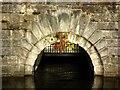 NS5576 : Mugdock Reservoir [5] by Robert Murray
