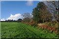 SW5931 : Towards Godolphin Hill by Ian Capper