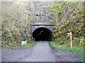 SK1871 : Western portal of the Headstone Tunnel on the Monsal Trail by Graham Hogg
