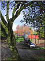 SO8993 : Play area in Baggeridge Country Park near Sedgley by Roger  Kidd