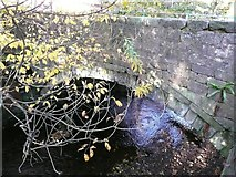 SE0025 : Hoo Hole Bridge, off Cragg Road, Mytholmroyd by Humphrey Bolton