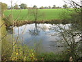 SJ6870 : Fishing lake South of Whatcroft Hall Lane by Dr Duncan Pepper