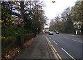 SD6609 : Chorley New Road (A673) by Philip Platt