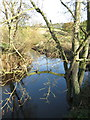 SJ6762 : The River Weaver looking upstream by Dr Duncan Pepper
