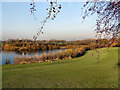 SJ9096 : Gorton Upper Reservoir by David Dixon