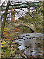 SJ9993 : River Etherow; Broadbottom Crossings by David Dixon