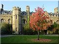 TL4457 : Gisborne Court at Peterhouse, Cambridge University by Roger  Kidd
