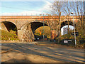 SJ9694 : Godley Viaduct by David Dixon