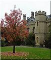 TL4457 : Gisborne Court at Peterhouse, Cambridge by Roger  Kidd