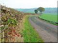 SO6522 : Farm track; late autumn : Week 47