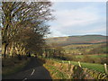 SJ9470 : Looking down the lane by Peter Turner
