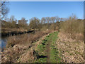 TL8087 : Bridleway along Little Ouse River by Hugh Venables