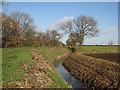TL5067 : Bannold Drove in November by John Sutton