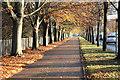 SK5437 : University Boulevard : Week 47