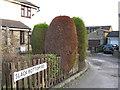 SE1429 : Slack Bottom Road, Wibsey Slack by Alex McGregor