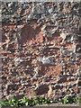 SX9372 : Eroded Teignmouth breccia in a wall by Robin Stott