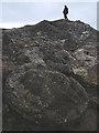 SD4770 : A giant Ammonite? : Week 48