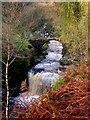 SD9931 : Waterfall and bridge at Lumb Hole by John Darch