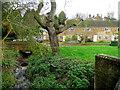 SP3533 : Hook Norton cottages 1 by Jonathan Billinger