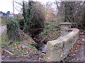 SP0179 : Merritt's Brook Between Waterworks Drive & Frankley Lodge Road by Roy Hughes