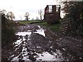 ST0305 : A muddy field entrance at Mutterton by David Smith