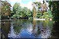 TM1645 : Lake, Christchurch Park by N Chadwick
