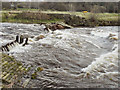 SJ9489 : Chadkirk Weir, River Goyt by David Dixon