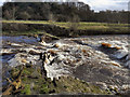 SJ9489 : Broken Weir, Chadkirk by David Dixon