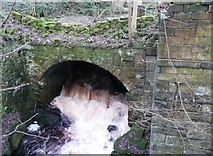 SE0023 : Culvert under ruined mill, Cragg Vale by Humphrey Bolton