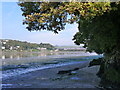 SX5055 : Plym estuary from Saltram Estate, near Plymouth by Ruth Sharville