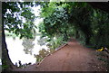 TQ6647 : Medway Valley Walk (MVW) by N Chadwick