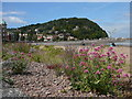 SS9746 : The seafront at Minehead with view towards Higher Town by Colin Park