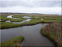 SJ2874 : Burton Marsh by Peter Aikman