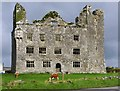 R2393 : Leamaneh Castle, near Kilfenora, Co. Clare by P L Chadwick