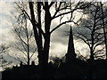 SK2168 : Bakewell church and trees in silhouette : Week 51