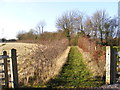 TM2872 : Footpath to Framlingham Road by Adrian Cable