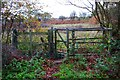 SO8073 : Kissing gate at entrance to Burlish Top Nature Reserve, Stourport-on-Severn by P L Chadwick