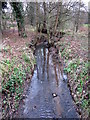 SP0381 : Griffin's Brook, Passing Under Cob Lane by Roy Hughes