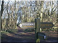 SP8406 : Signposts for the Ridgeway south of Coombe Hill by Peter 
