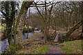 SD5814 : A footbridge by the River Yarrow by Ian Greig
