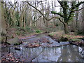 SP0280 : Manor Farm - The Start of Griffin's Brook (2) by Roy Hughes