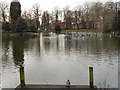 SJ8394 : Alexandra Park Lake by David Dixon