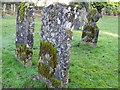 ST9929 : Gravestones, St George's Churchyard by Miss Steel